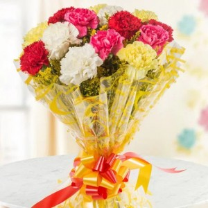 10 Mixed Color Carnations