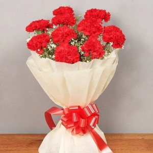 Bouquet of 10 Red Carnations