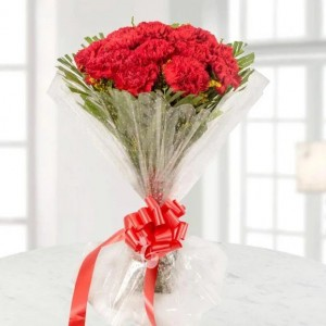 Bunch of 15 Red Carnations