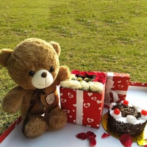 Teddy Cake with Chocolate and Rose Gift Box
