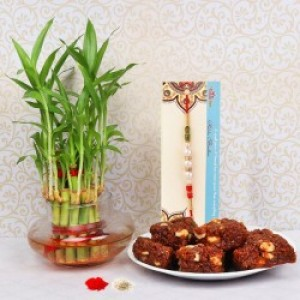 Rakhi with Doodha Barfi and Bamboo Plant