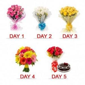 5 Days Valentine celebration