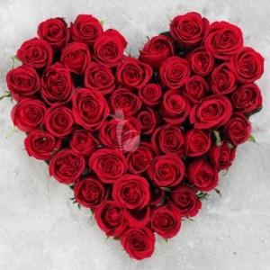 Hello My Valentine